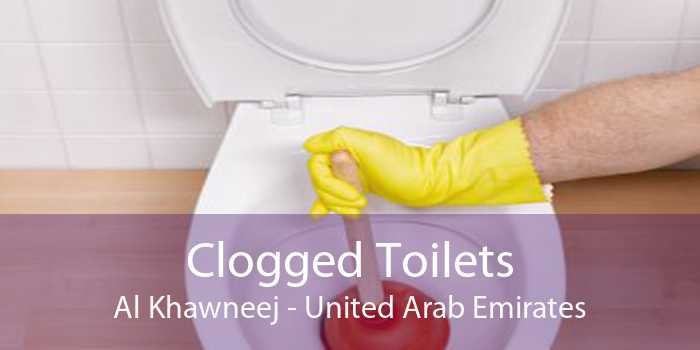 Clogged Toilets Al Khawneej - United Arab Emirates