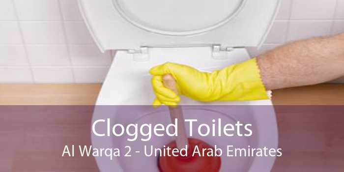 Clogged Toilets Al Warqa 2 - United Arab Emirates