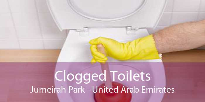 Clogged Toilets Jumeirah Park - United Arab Emirates