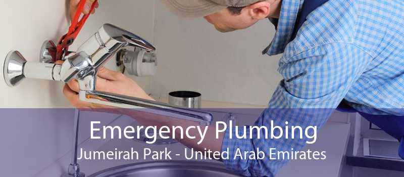 Emergency Plumbing Jumeirah Park - United Arab Emirates