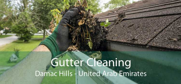 Gutter Cleaning Damac Hills - United Arab Emirates