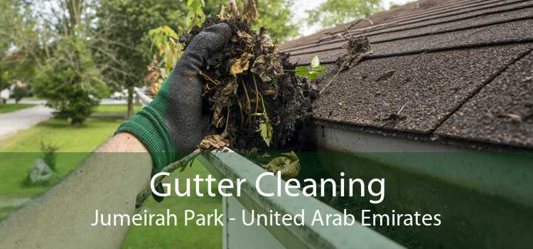 Gutter Cleaning Jumeirah Park - United Arab Emirates
