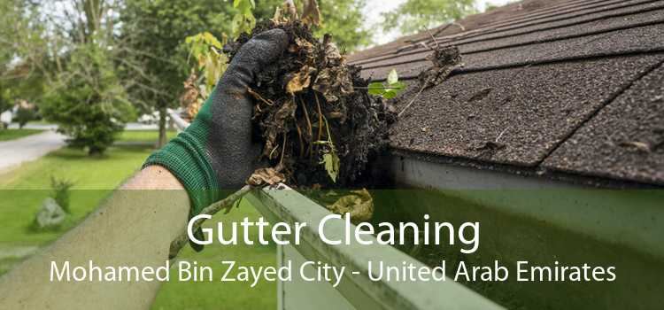 Gutter Cleaning Mohamed Bin Zayed City - United Arab Emirates