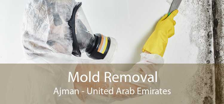 Mold Removal Ajman - United Arab Emirates
