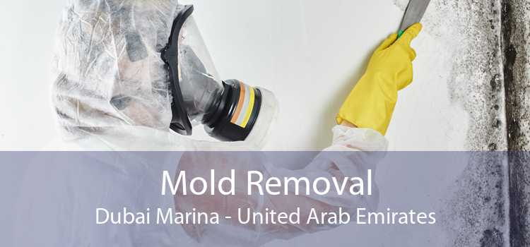 Mold Removal Dubai Marina - United Arab Emirates
