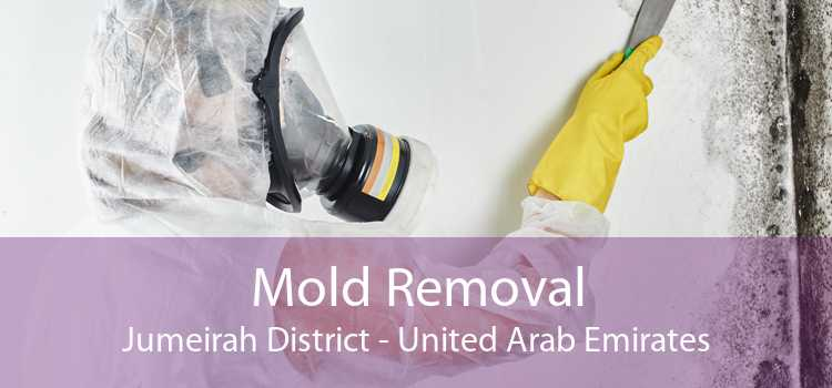 Mold Removal Jumeirah District - United Arab Emirates