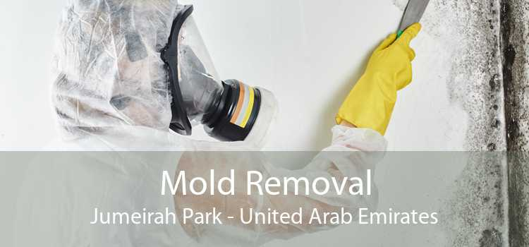 Mold Removal Jumeirah Park - United Arab Emirates