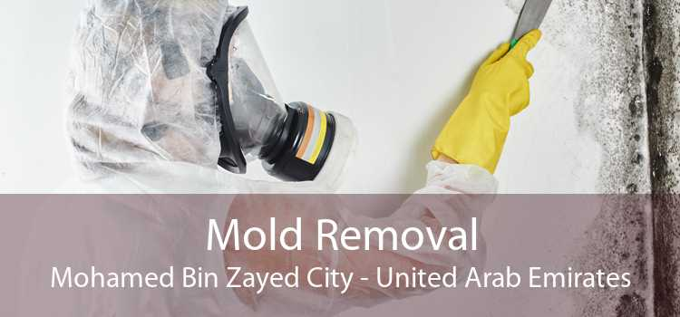 Mold Removal Mohamed Bin Zayed City - United Arab Emirates