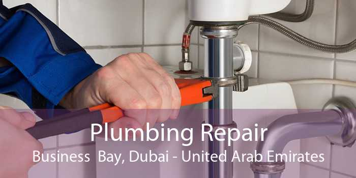Plumbing Repair Business  Bay, Dubai - United Arab Emirates