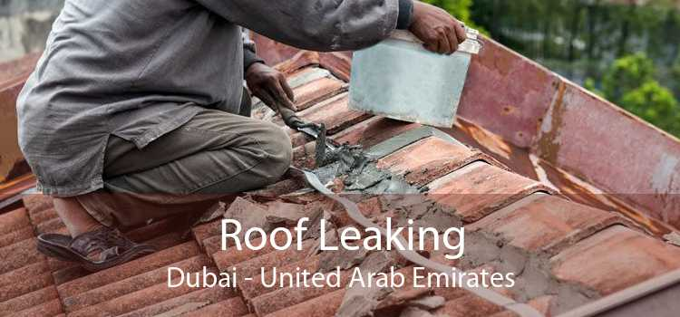 Roof Leaking Dubai - United Arab Emirates